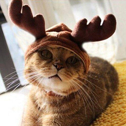 Kungfu Mall gorro de disfraz de mascota gato perro cuernos de Navidad Cap mascota  perro ropa cuernos de reno gorro de invierno cachorro de perro gato ... a8530105da0