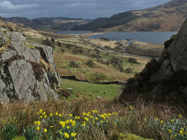 ICONIC WELSH HILLFARM PART III - PAYING MY RESPECTS by Mike Howe on #MikeHowe.com | Image: Their View © Mike Howe