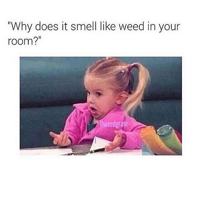 Smell Like Weed In your Room