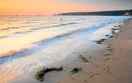 Studland Bay, Swanage, Dorset, England - my spiritual home