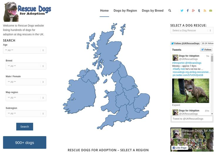 Thanks for following & RT's to help find homes!  993 dogs for adoption currently listed on -> http://rescuedogs.org.uk