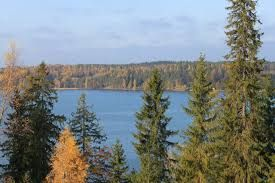 Kuvahaun tulos haulle järvi kuva maalaus