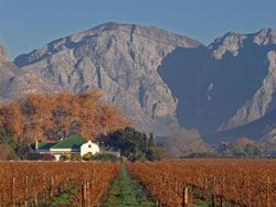Cape Town and Winelands vacation package, including air!