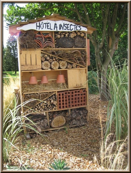 Yes, not only flowers 2 keep bees n butterflies happy but also a cute winter home.