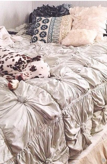 Boho Bedding and Tapestries - New Arrivals and Favorites