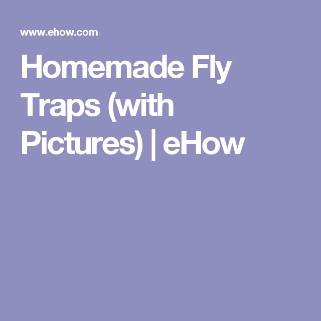 Homemade Fly Traps (with Pictures) | eHow
