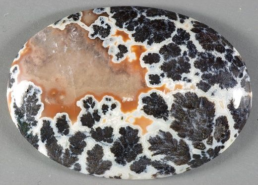 Texas Plume Agate - Woodward Ranch, Alpine Texas