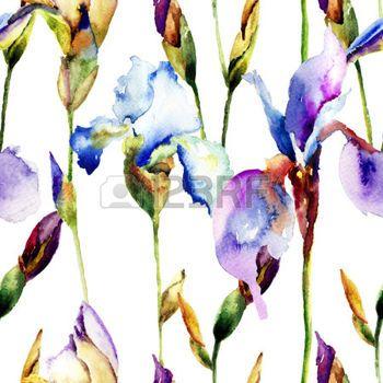 Naadloze patroon met bloemen van de Iris, aquarel illustratie photo