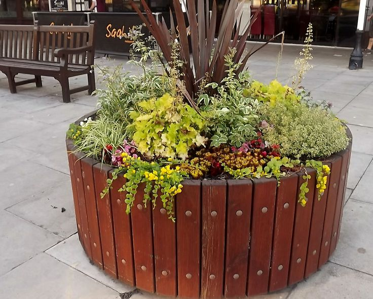 Barford House Apartments Sponsor all the large wooden planters along Lord Street.