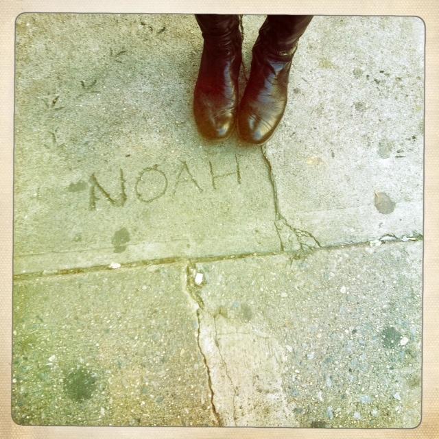 noah love