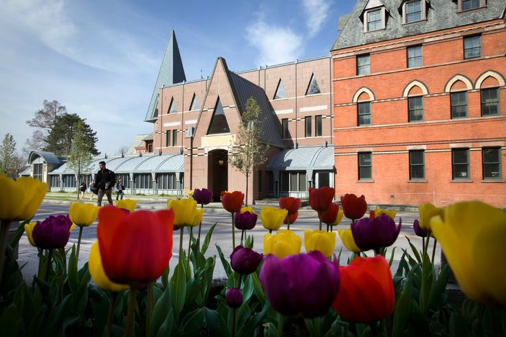 Tulips outside Sage Hall in spring. Photo by University Photography.