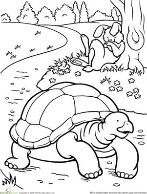 20 best Tortoise and the Hare images on Pinterest