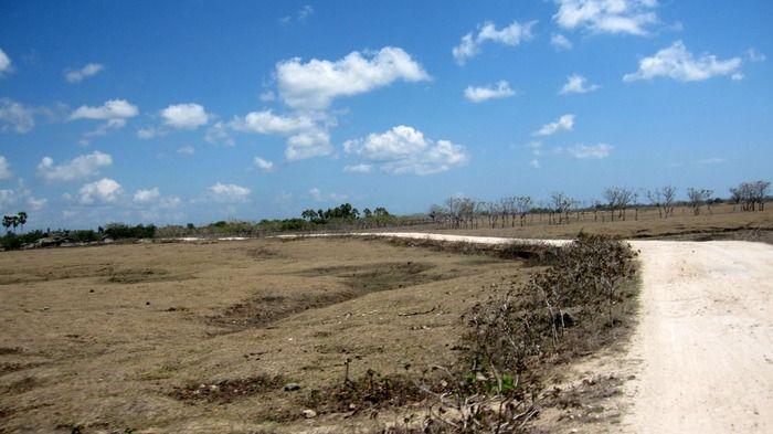 The long dry road to Nemberala. Photo by Indra Febriansyah