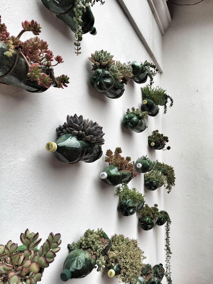 Nothing like a little living wall ♻️  #succulents #verticalgarden #recycle #interiordesign #interior #interiorinspo #DIY #decoration #decor #inspiration #sustainability