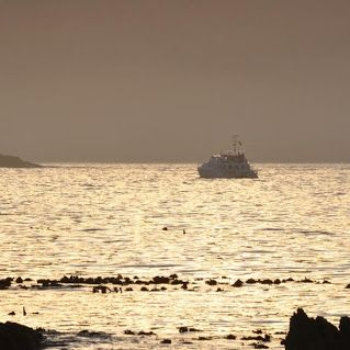 A sunrise as Miroshca goes out to find #whales! Our favourite place to be!