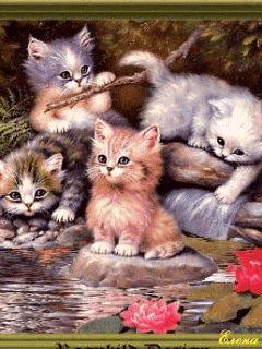 http://best-animation.ru Animated images cats Анимированные картинки кошки