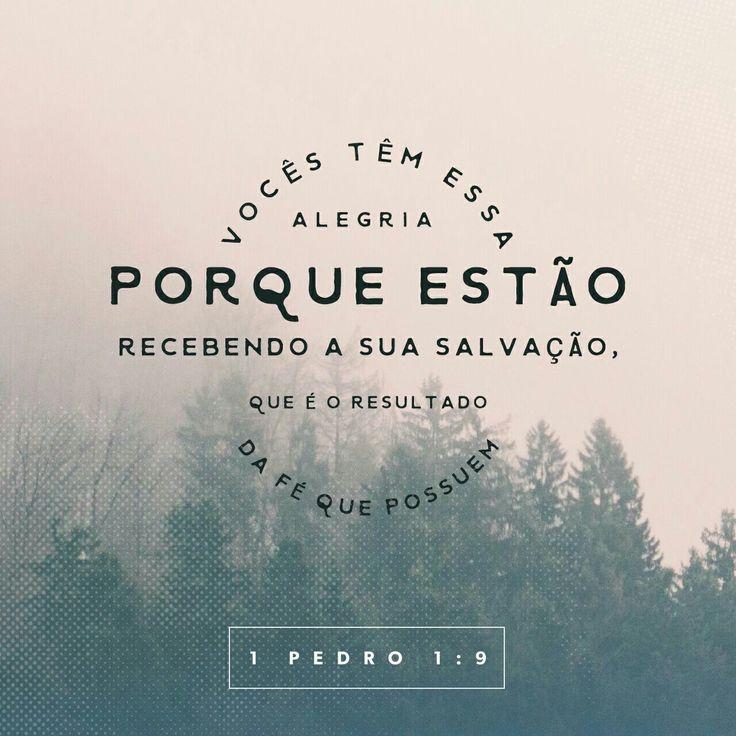 Mesmo não o tendo visto, vocês o amam; e, apesar de não o verem agora, creem nele e exultam com alegria indizível e gloriosa, pois vocês estão alcançando o alvo da sua fé, a salvação das suas almas. 1 Pedro 1.8-9 ❤