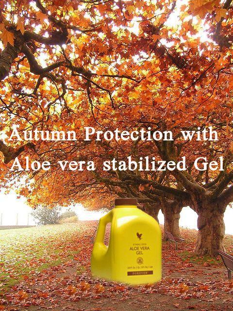 Autumn Protection. https://www.facebook.com/foreverrocksforever