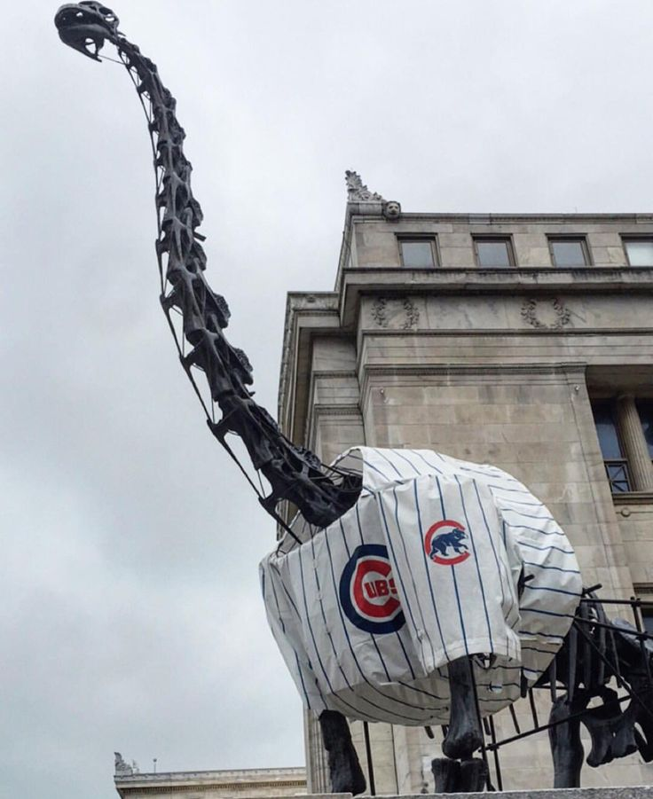 Field Museum finally gets to rock a Cubs Jersey!                                                                                                                                                                                 More