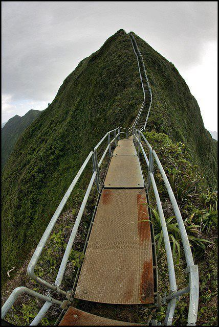 Stairway to Heaven Hawaii. So crazy beautiful I have to go there