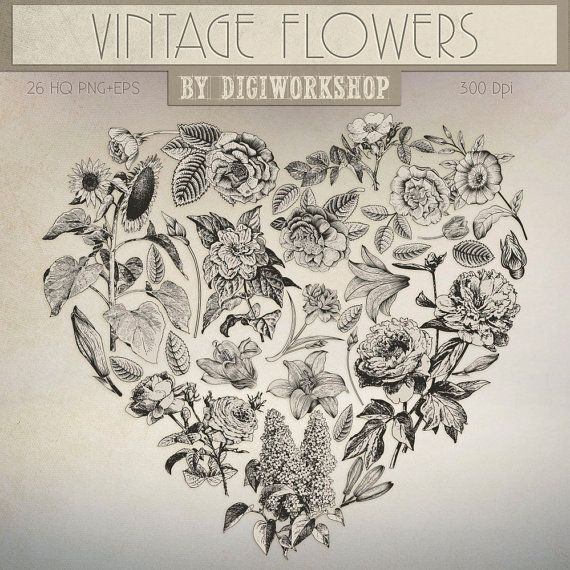 #Flower Clip Art #Clipart, #Floral Clip Art Clipart: Vintage Flowers  This vintage clip art contains 26 different vector flowers, very suitable for cards, invites, iron on tra... #etsy #digiworkshop #scrapbooking #illustration #creative #printables #cardmaking
