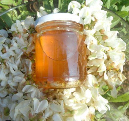 gelée de fleurs d'acacia