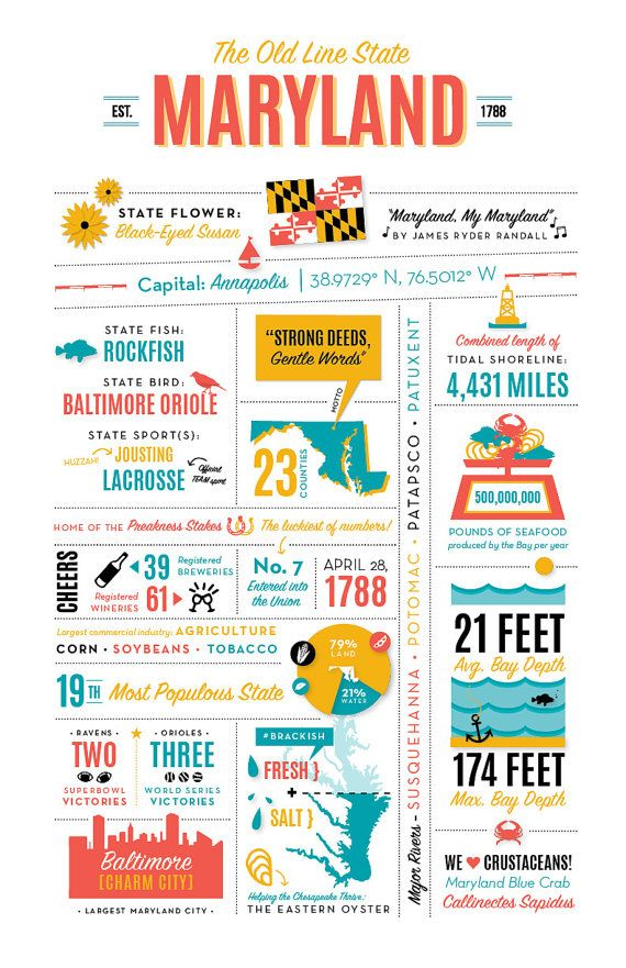 "Maryland Infographic Print - 11"" x 17"" - Baltimore Art"