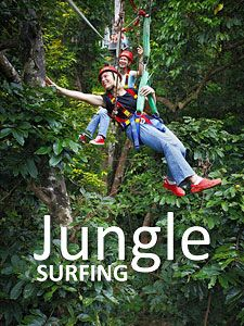 Daintree Jungle Surfing, Queensland