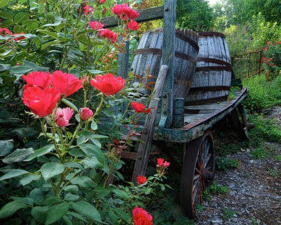 Strolling Through the Rose Garden by Bonnie Sernesky on Etsy