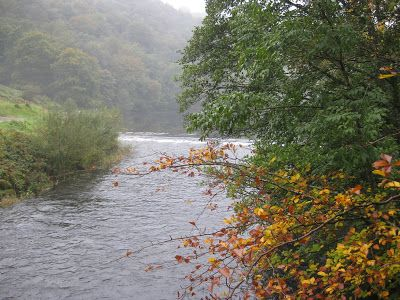 White Moss House and Brockstone Holiday Cottage: Autumn Mist Grasmere