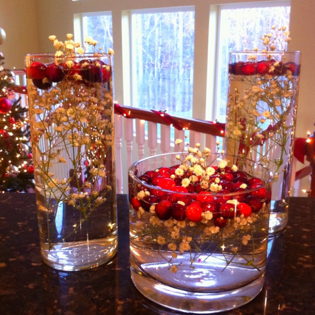 17 best images about brooke 39 s wedding ideas on pinterest for Artificial cranberries for decoration