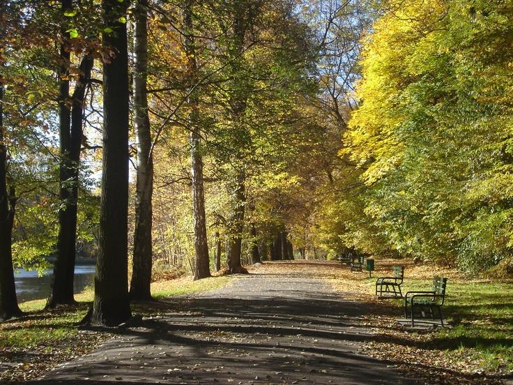 Julianow Park