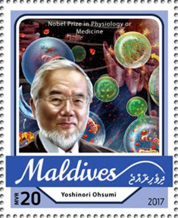 Stamp: Yoshinori Ohsumi, Nobel Prize in Physiology or Medicine (Maldives) (Nobel Prize winners 2016) Mi:MV 6809