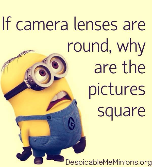 Why are pictures square