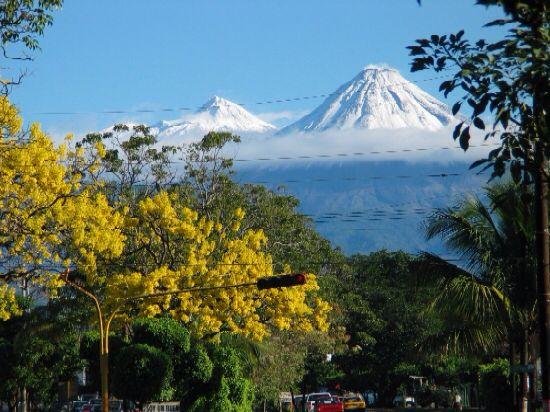 Las primaveras en Colima.