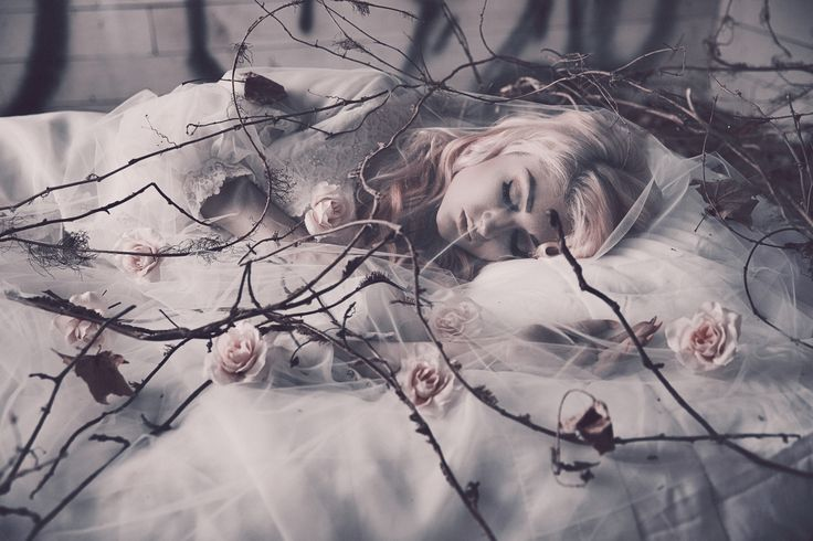 Jason Busby – Sleeping Beauty