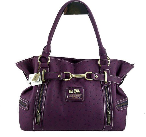 plum coach purse