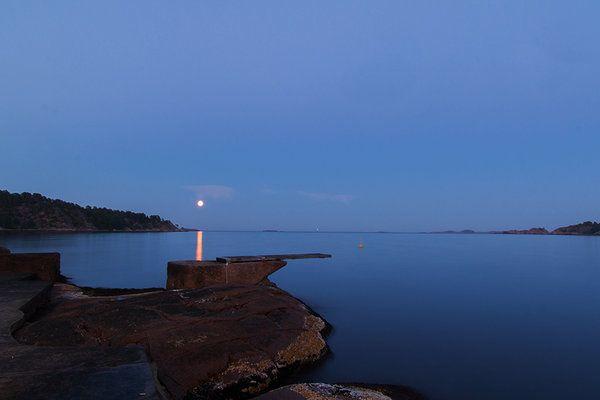 Moonlight divers by Linlith.deviantart.com on @DeviantArt
