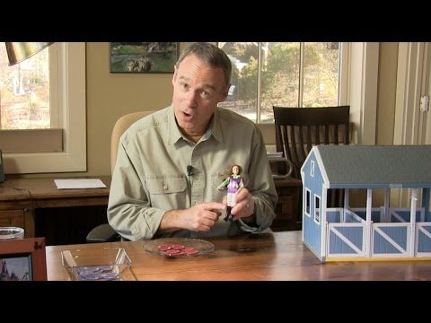 Credit default swaps illustrated with toys - YouTube