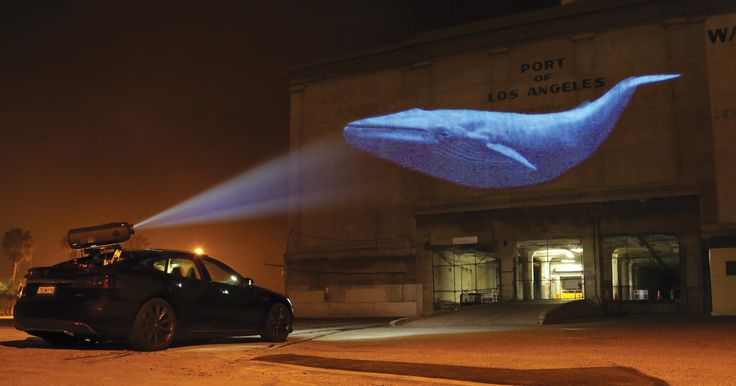 With a 15,000-lumen projector onboard, this Model S throws shade on nefarious players by blasting images of endangered animals onto their buildings.