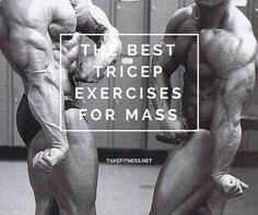 For many beginners, the assumption is that if you want big arms then you should spend a decent portion of your weight training time focusing on the biceps. While building big biceps certainly helps, the triceps actually make up a larger... #musclebuilding