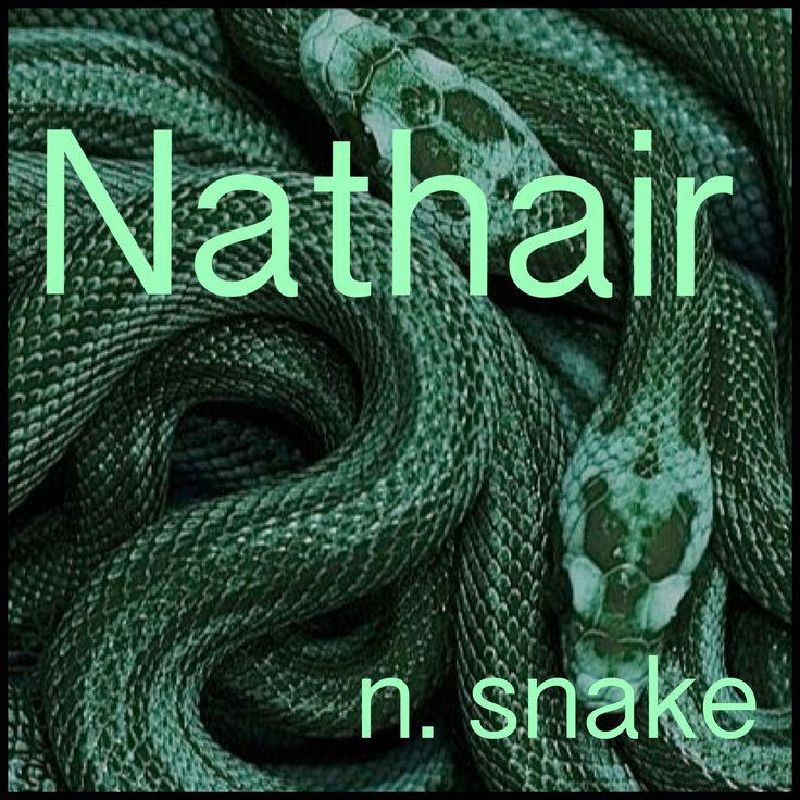 Boys Name: Nathair; Name Meaning: snake; Name Origin: Scottish