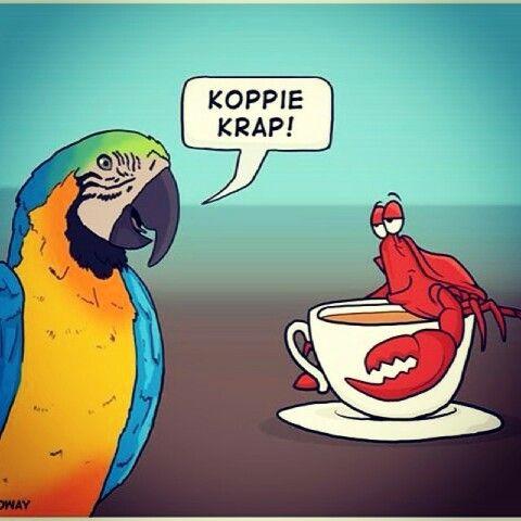 Koppie krap! #Afrikaans __[IdeesVolVrees/FB](Kobus Galloway) #words@play