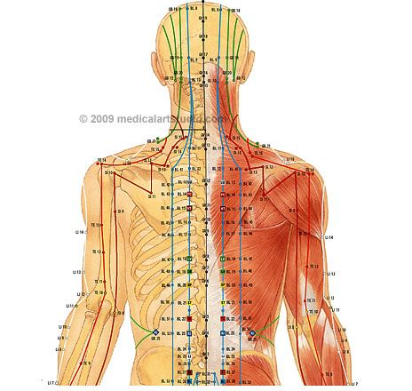 301 best acupuncture n acupressure images on pinterest acupuncture points chart back acupuncture points chart ccuart Gallery