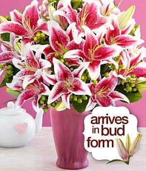 stargazer lily wedding bouquets | Tropical Beach Wedding Flowers- Stargazer Lilies, Blue Dendrobium ...