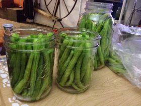 Reluctant Domestic Diva: Refridgerator Garlic Dill Green Beans
