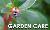 NGA - The National Gardening Association is a Vermont-based national nonprofit leader in garden-based education. Our mission is to empower every generation to lead healthier lives, build stronger communities, and encourage environmental stewardship through educational gardening programs. We fulfill our mission by providing information and support for youth and school gardening programs, home gardeners, and the lawn and garden industry - one child, one school, one community at a time.