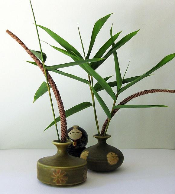 greens bonsai ikebana