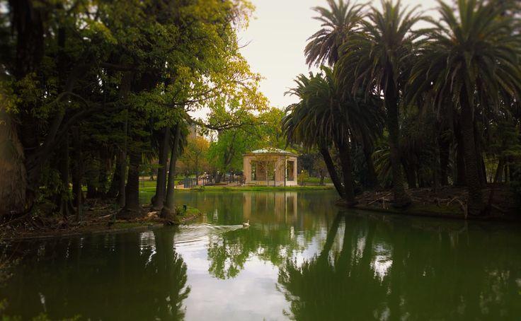 Laguna Parque Rodo. Montevideo