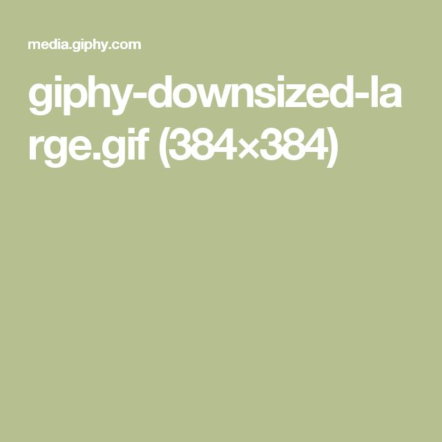 giphy-downsized-large.gif (384×384)